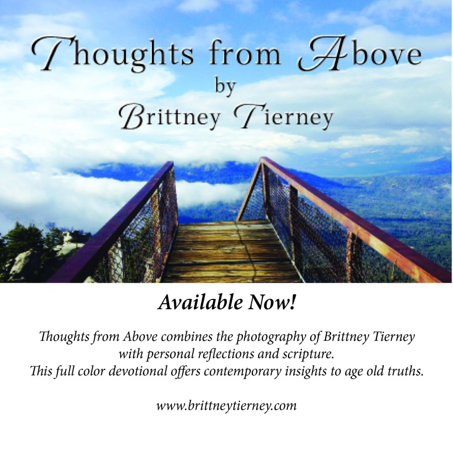 TfA Postcard 1